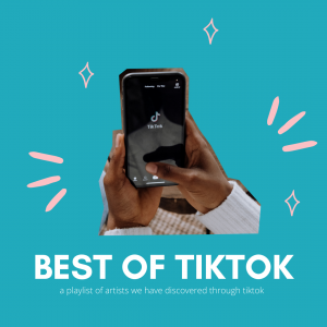 TikTok: 2020's Best Platform and The Impact Its Had on Music and Art